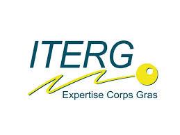 logo_iterg